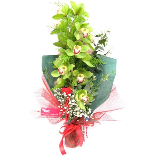Yeşil Orkide Buketi